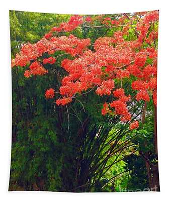 Flamboyant With Bamboo Tapestry