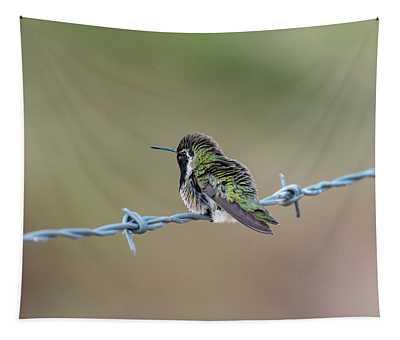 Fluffy Hummingbird Tapestry