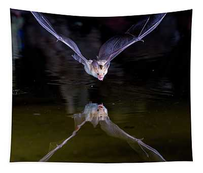 Flying Bat With Reflection Tapestry