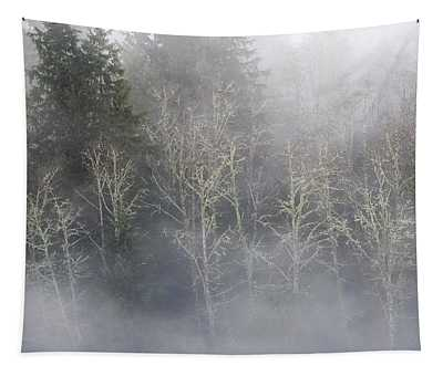 Foggy Alders In The Forest Tapestry