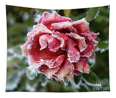 Frosty Red Winter Rose Tapestry