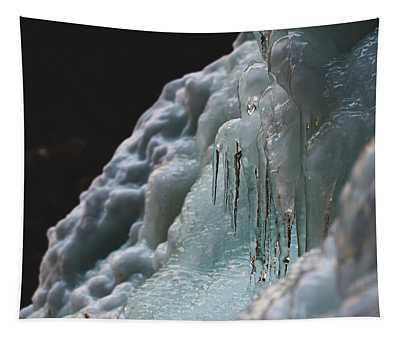 Frozen Tapestry