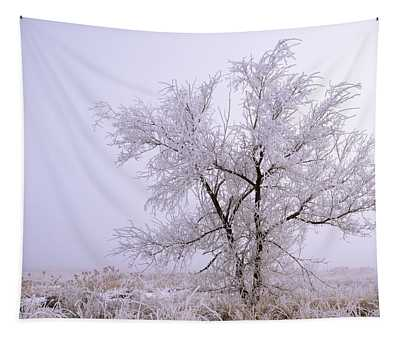 Frozen Ground Tapestry