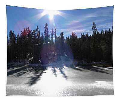 Sun Reflecting Kiddie Pond Divide Co Tapestry
