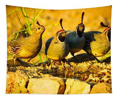 Gambel's Quail Foursome Tapestry