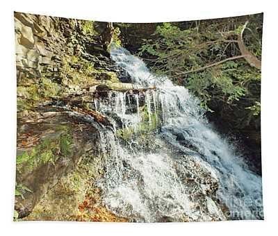Ganoga Falls 5 - Ricketts Glen Tapestry