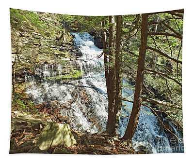 Ganoga Falls - Ricketts Glen Tapestry