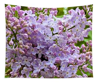 Gentle Purples Tapestry