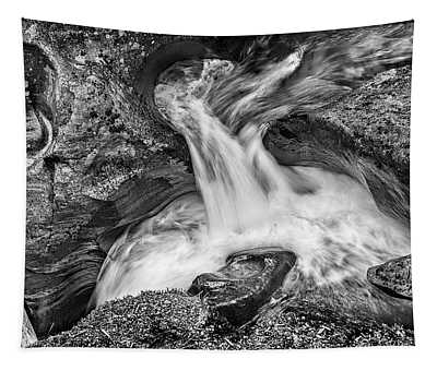 Glacier National Park's Avalanche Gorge In Black And White Tapestry