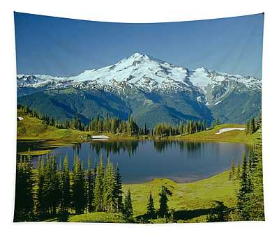 1m4422-glacier Peak, Wa  Tapestry