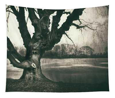 Gnarled Old Tree Tapestry
