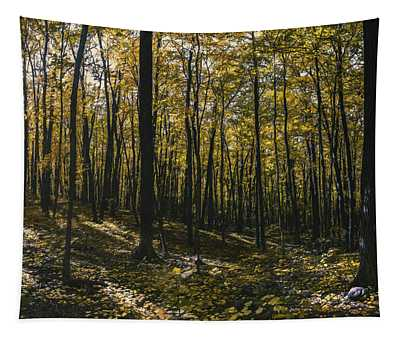 Golden Woods Tapestry