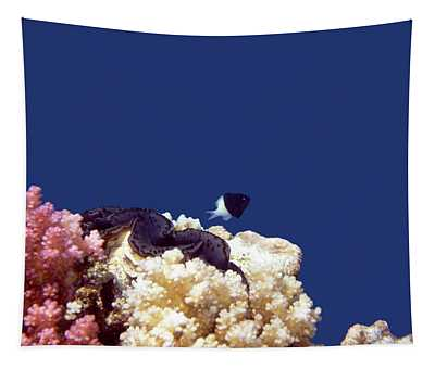 Gorgeous Red Sea World 4 Tapestry