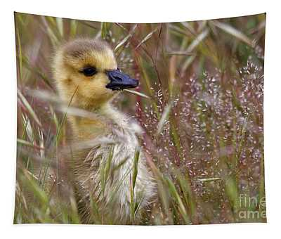 Gosling In The Meadow Tapestry
