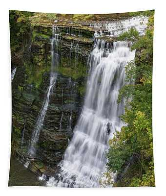 Grandaddy Burgess Tapestry