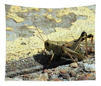 Grasshopper Laying Eggs Tapestry