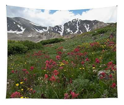 Gray's And Torreys Tapestry