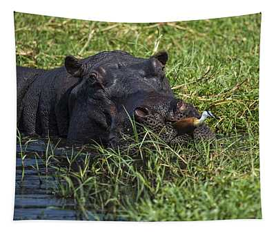 The Hippo And The Jacana Bird Tapestry