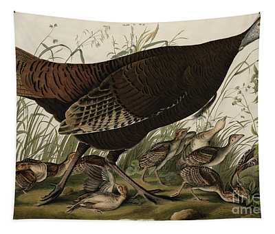Great American Hen And Young Tapestry