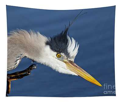 Great Blue Heron - Good Scratch Tapestry