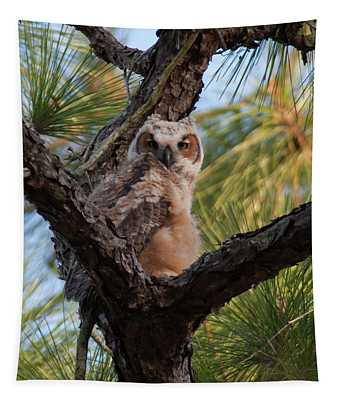 Great Horned Owlet Tapestry