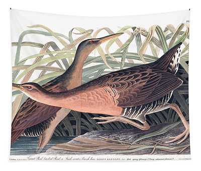 Great Red Breasted Rail Or Fresh-water Marsh Hen Tapestry