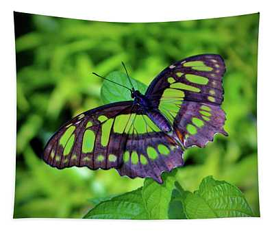 Green And Black Butterfly Tapestry