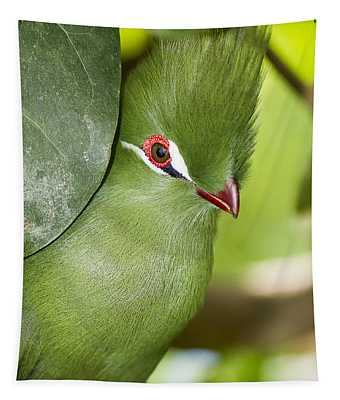 Green Turaco Bird Portrait Tapestry