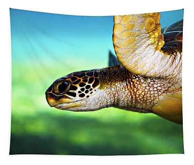 Green Turtle Photographs Wall Tapestries