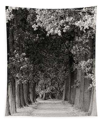 Greeted By Trees Tapestry