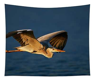 Grey Heron In Flight Tapestry