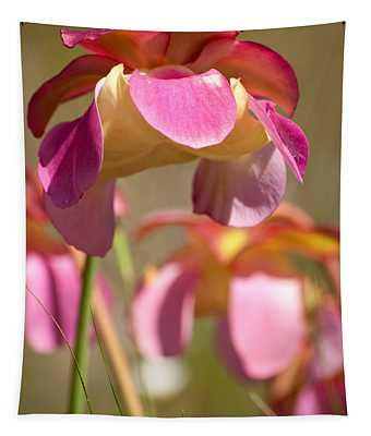 Gulf Purple Pitcher Plant Tapestry
