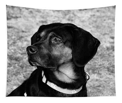 Gus - Black And White Tapestry