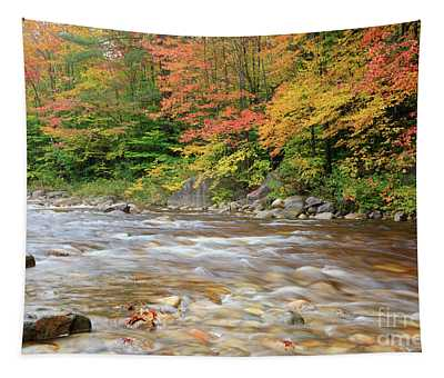 Hancock Branch - White Mountains New Hampshire  Tapestry