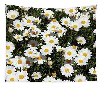 Happy Daisies- Photography By Linda Woods Tapestry
