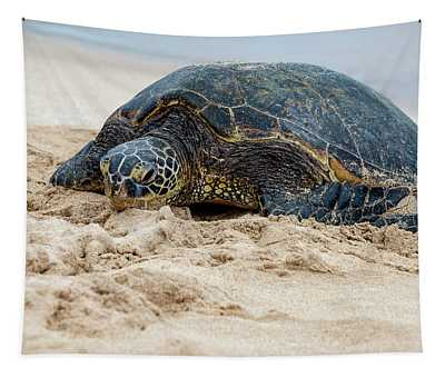 Hawaiian Green Sea Turtle 4 - Oahu Hawaii Tapestry