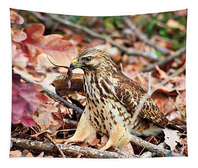 Hawk Catches Prey Tapestry