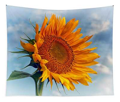 Helianthus Annuus Greeting The Sun Tapestry