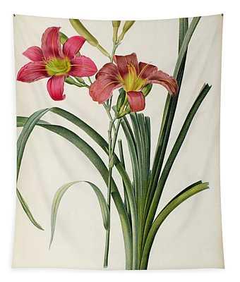 Hemerocallis Fulva Tapestry
