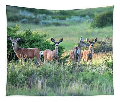 Herd Of Muleys Tapestry