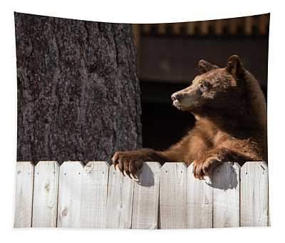 Hey There Neighbor By Brad Scott Tapestry