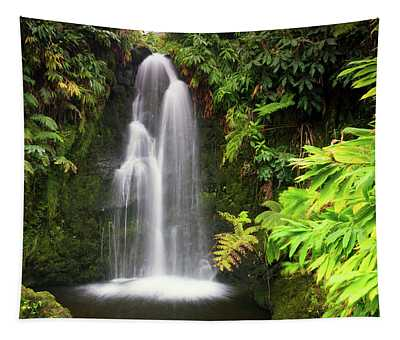 Hidden Waterfall Tapestry