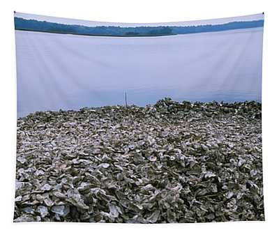 High Angle View Of Oyster Shells Tapestry