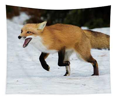 High Speed Fox Tapestry