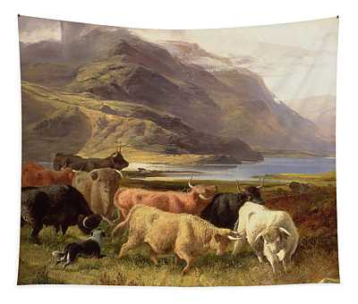 Highland Cattle With A Collie Tapestry