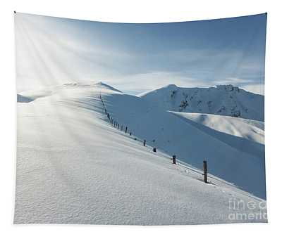 Hochwang Fence Tapestry