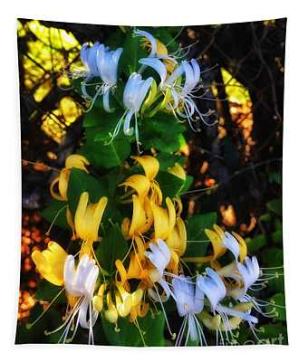 Honeysuckle Sweet Tapestry