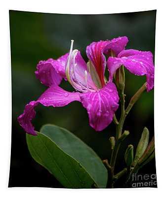 Hong Kong Orchid Tapestry