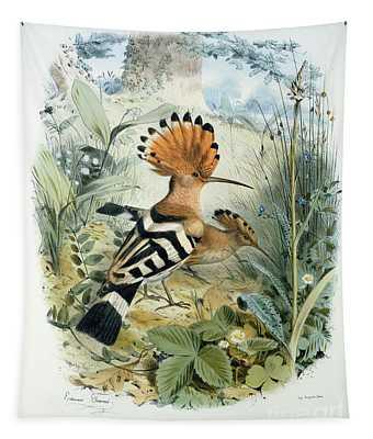 Natural Habitat Drawings Wall Tapestries