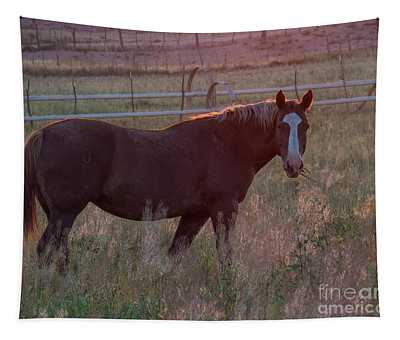 Horses 2 Tapestry